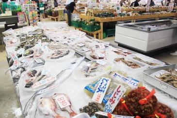 道の駅に並ぶ朝とれたばかりの新鮮なお魚。
